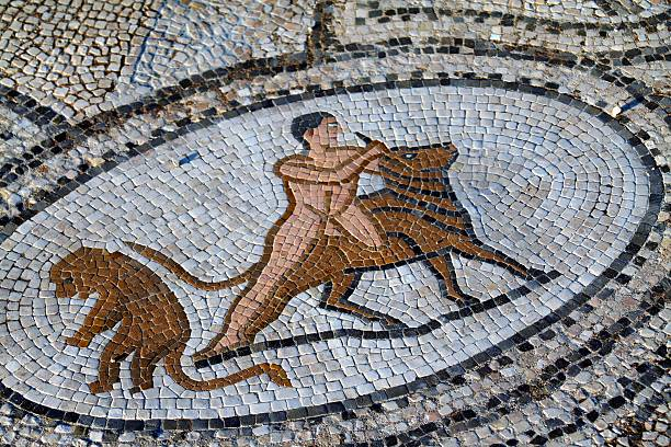 """The labours of Hercules """"A partial view of the famous ancient Roman mosaic that shows one of the twelve labours of Hercules.Archaeological site of Volubilis, Morocco.Unesco world heritage site."""" greco roman style stock pictures, royalty-free photos & images"""
