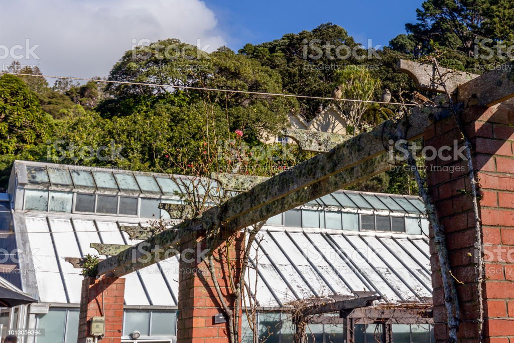 De Lady Norwood rozentuin in Wellington Botanic Garden, Wellington, Nieuw-Zeeland.​​​ foto