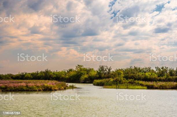 Photo of the lagoon channel from a boat, Bibione, Venice, Italy