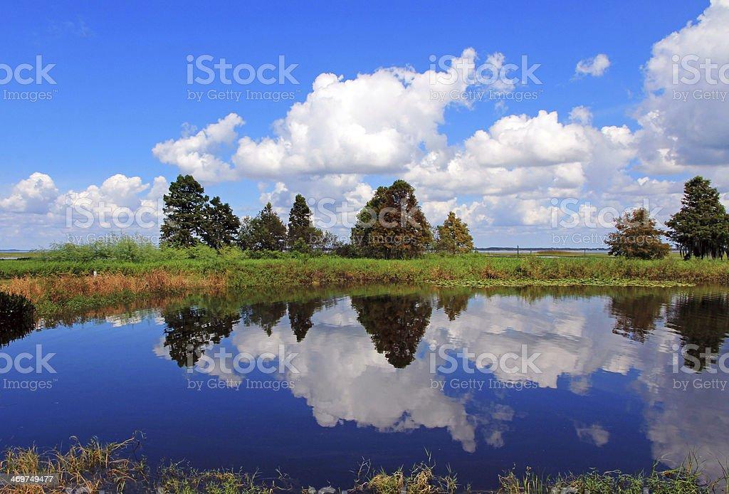 the lake in Florida stock photo