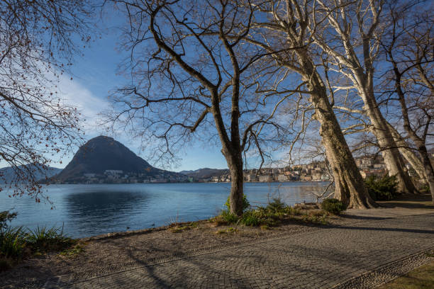 The lake of Lugano with misty sky, trees and mountains at the distance stock photo