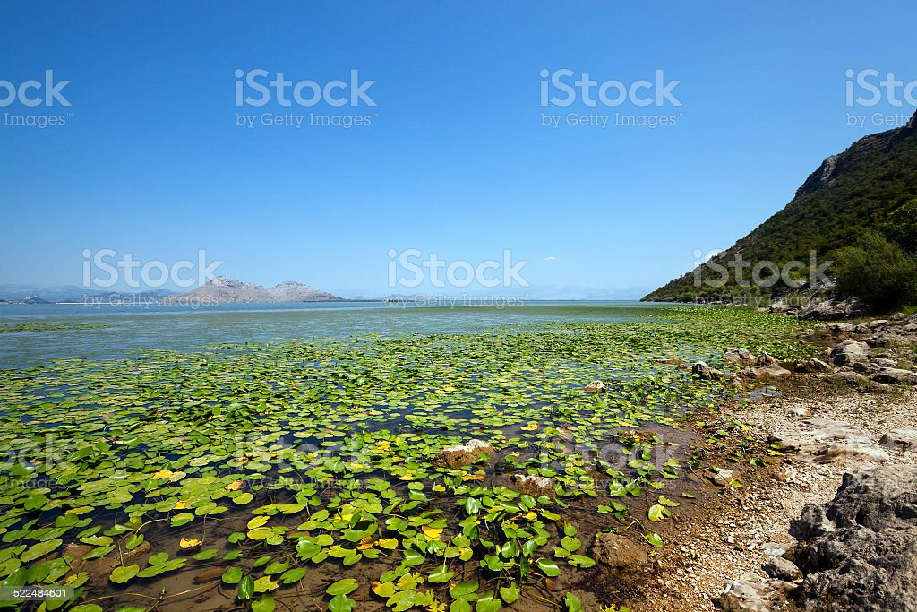 the lake (Montenegro) stock photo