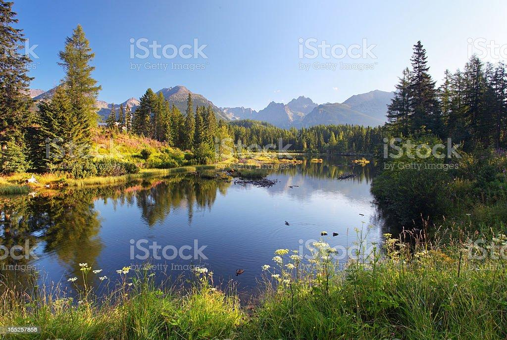 The lake Strbske pleso in Tatra mountain - Slovakia royalty-free stock photo
