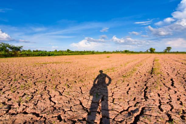 çorak ve çatlamış ve akşamları güneşin ışınları olan topraklar - kuraklık stok fotoğraflar ve resimler