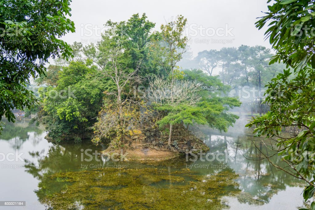 The landscape of old tree in lake stock photo