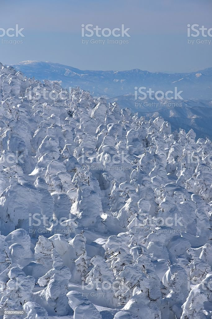 The landscape of Zao in winter, Yamagata, Japan stock photo