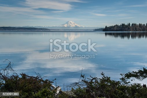The landscapes and seascapes of Puget Sound are a constant source of inspiration for photographers. This picture of a tranquil Puget Sound reflecting the puffy clouds and blue sky was photographed from Penrose Point State Park, Washington State, USA.