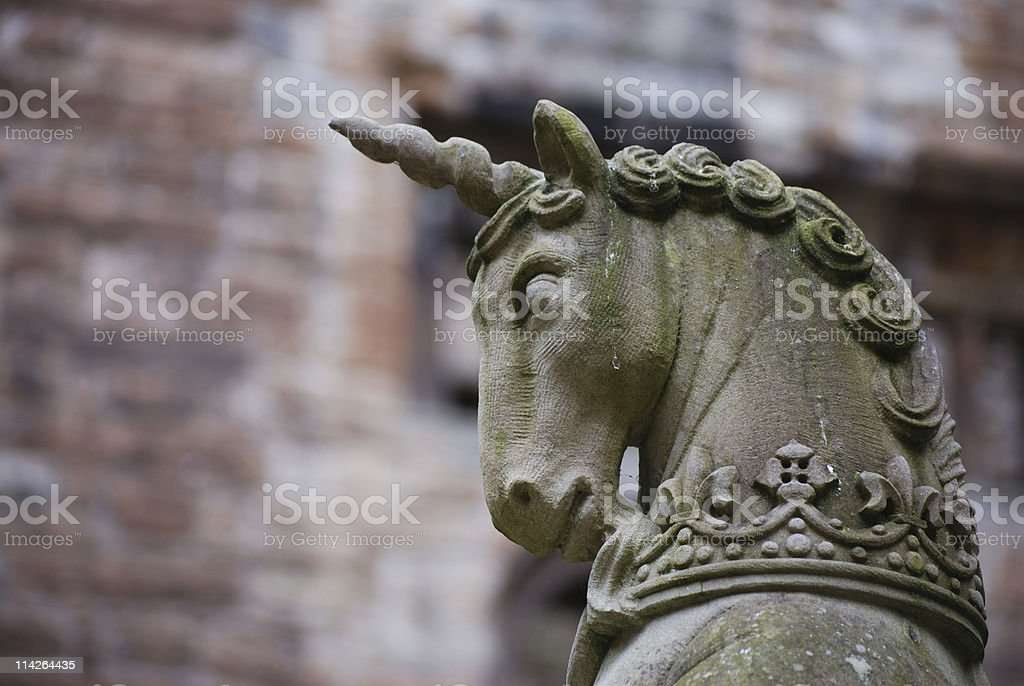 The last unicorn stock photo