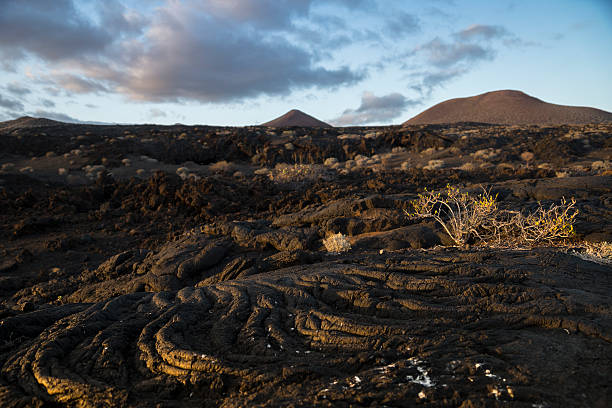 The lava flow stock photo