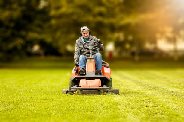 the lawn mower the lawn mower drives through a green meadow mowing stock pictures, royalty-free photos & images
