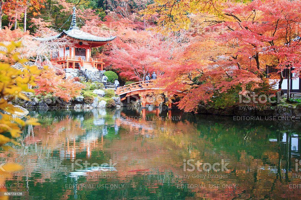 The leave change color of red in Temple japan stock photo