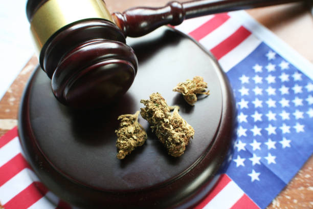 The Legalization Of Marijuana High Quality The Legalization Of Marijuana High Quality Stock Photo marijuana stock pictures, royalty-free photos & images