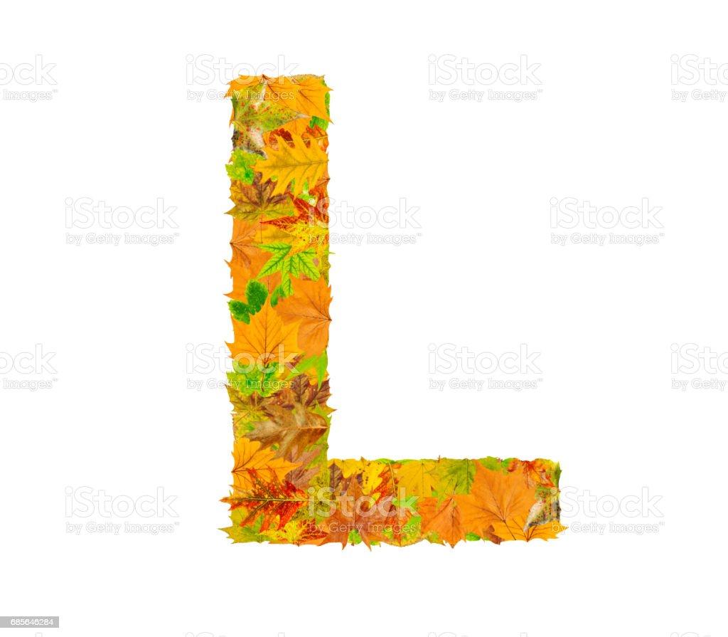 秋のアルファベットの文字 L の葉します。 ロイヤリティフリーストックフォト