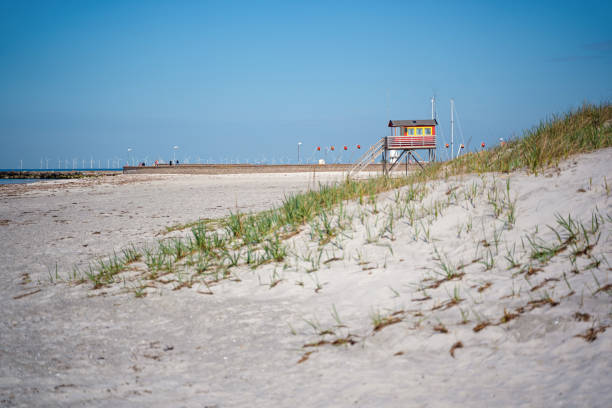 liv vakts tornet på sanddyn vid skanor falsterbo i skåne län - sand dune sweden bildbanksfoton och bilder