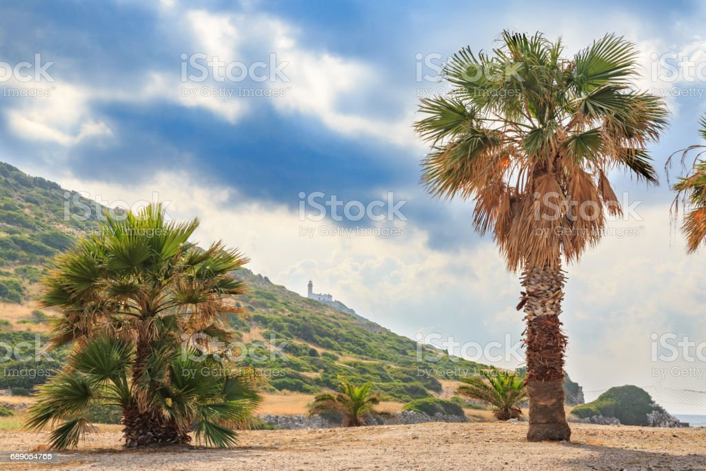 The lighthouse between palm trees in knidos, Datca, Turkey stock photo