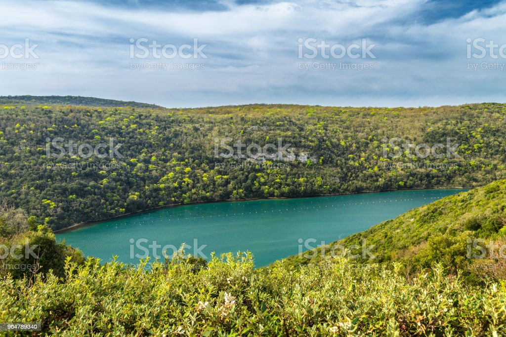 The Lim bay and valley near Rovinj and Vrsar. royalty-free stock photo