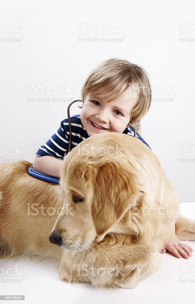 The little vet stock photo