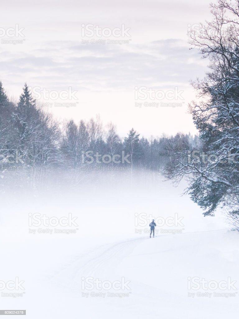 Der einsame Skifahrer – Foto