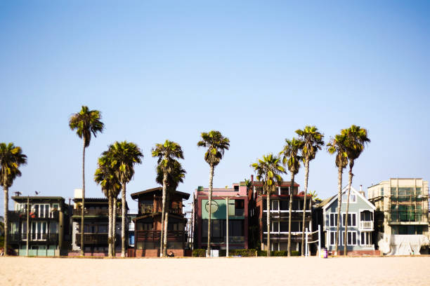 The Los Angeles Venice Beach with palm trees and expensive beach houses Venice beach in LA with beach house architecture, sand and trees venice beach stock pictures, royalty-free photos & images