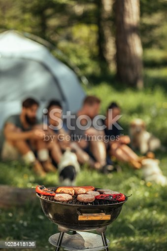 istock The lunch will be ready soon 1028418136