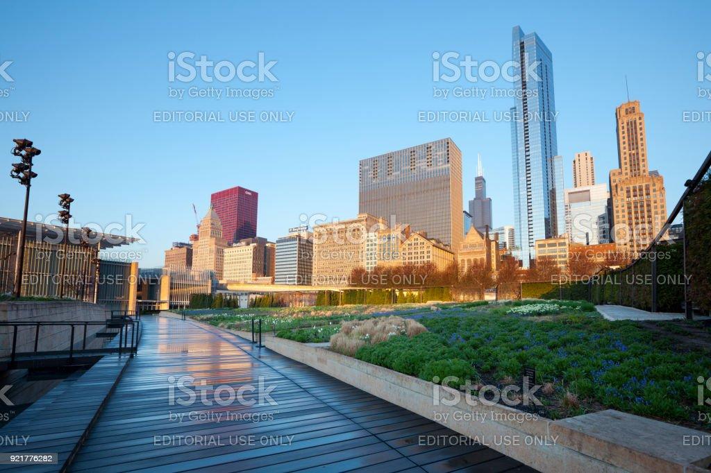 The Lurie Garden at Millennium Park in Chicago stock photo