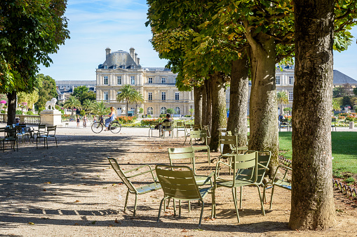 The Luxembourg garden in Paris, France, by a sunny summer morning with the Luxembourg palace in the background.