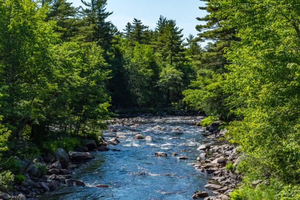 The Machias River stock photo