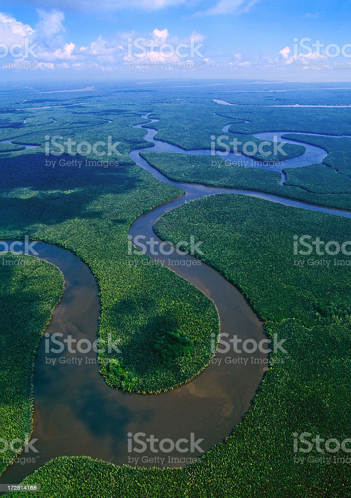 Im Delta in Ostkalimantan mahale mountain national park – Foto