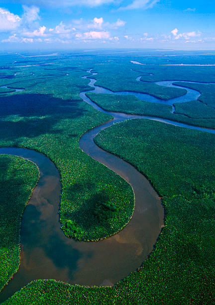 The Mahakam Delta in East Kalimantan Tectonic Evolution of the Sanga Sanga Block, Sustainable and Integrated Management of the Mahakam Delta.  island of borneo stock pictures, royalty-free photos & images