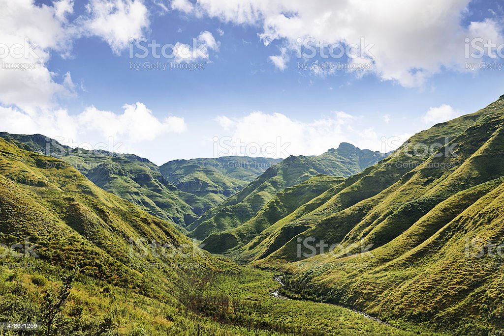 The majestic side of nature royalty-free stock photo