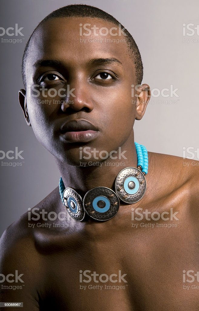 The male portrait. royalty-free stock photo