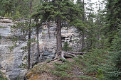 The Maligne River as it flows through the deep gorges of the Maligne Canyon in Jasper National Park in Alberta Canada.