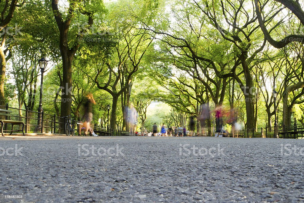 The Mall, Central Park, NYC stock photo