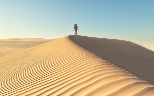 istock The man at the deserts landscape 617878170