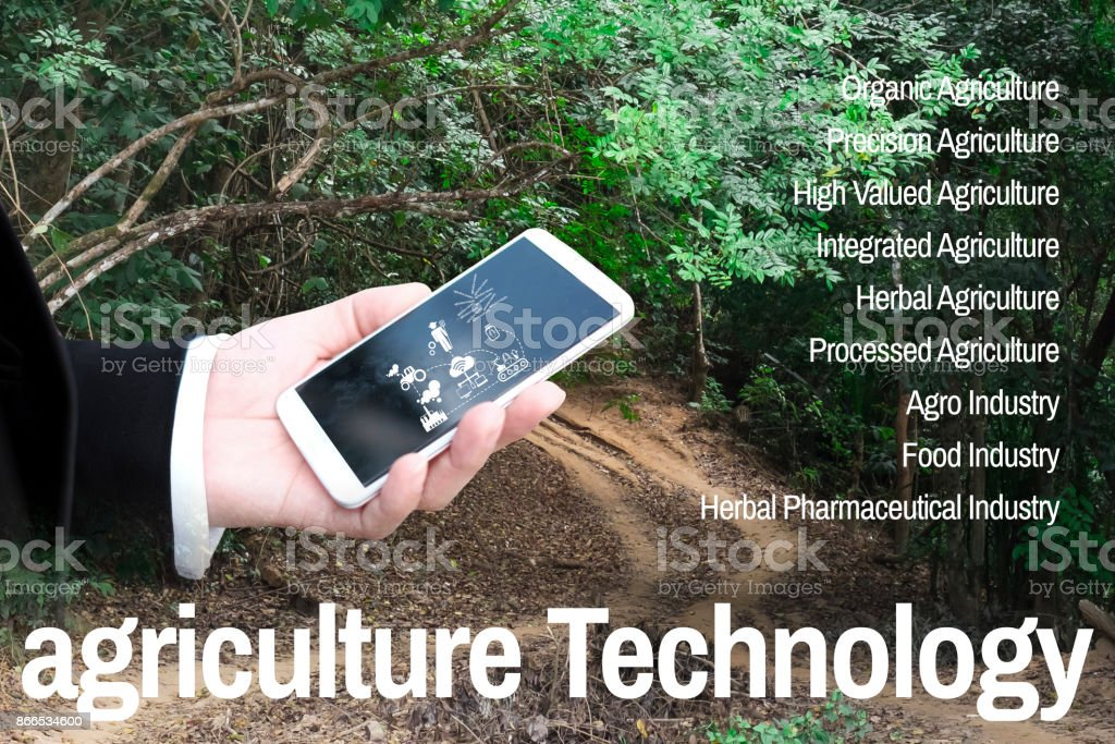 The man in work clothes look at mobile on agricultural technology background is the deep forest in Myanmar stock photo