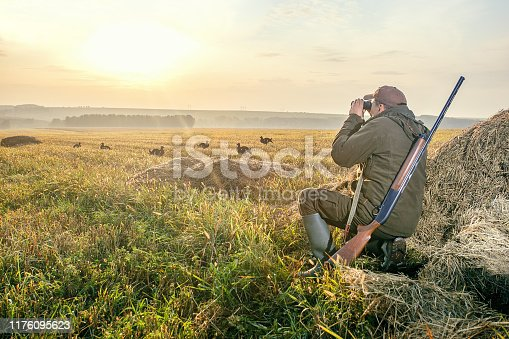 The man is on the hunt. Hunting period, autumn season. Male with a gun and binoculars at dawn. Hant on bird grouse.