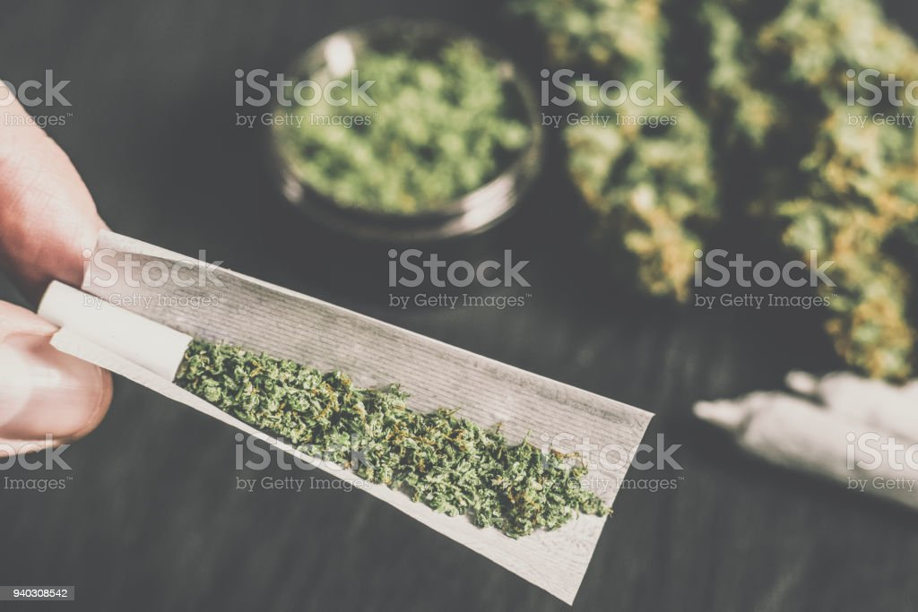 The man rolled the jamb with marijuana on the background of buds Matting vintage color stock photo