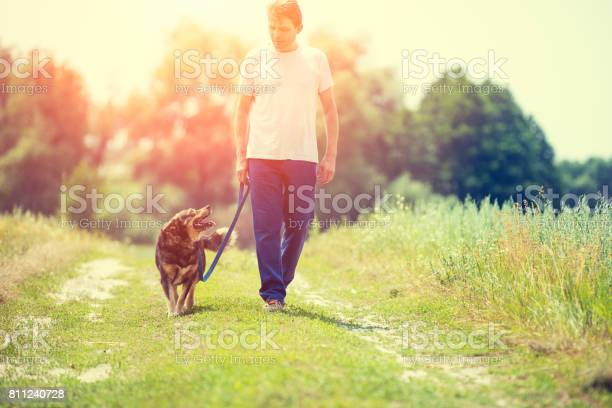 The man walks with a dog on a leash on a country road by the field picture id811240728?b=1&k=6&m=811240728&s=612x612&h=vumszwsul1c8rgc4ofmxqj6u7lhlcprl1br4ivl hc0=