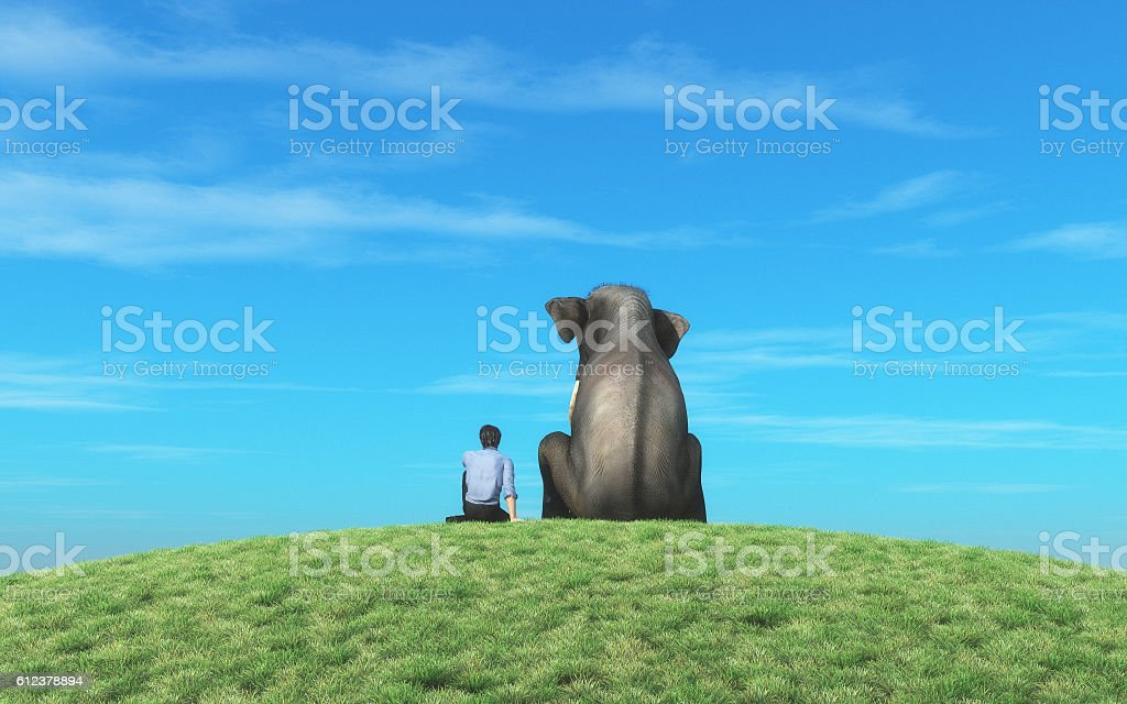 The man with elephant stock photo