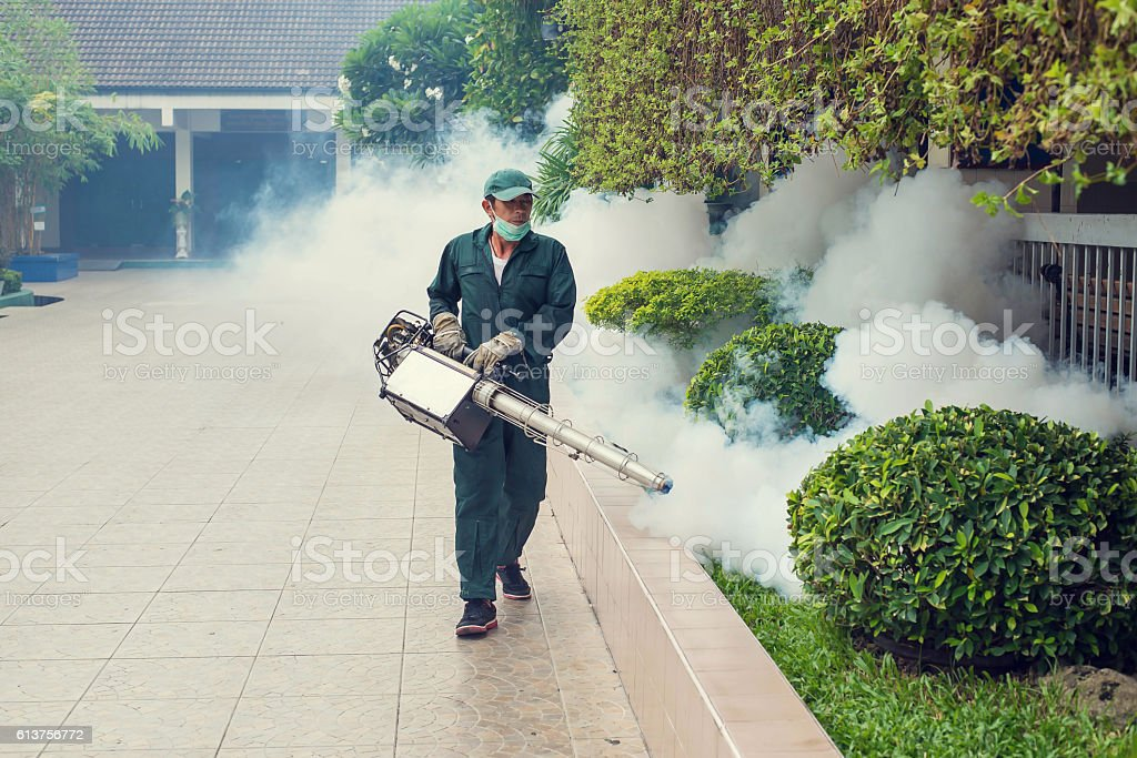 The man's fogging to eliminate mosquito stock photo