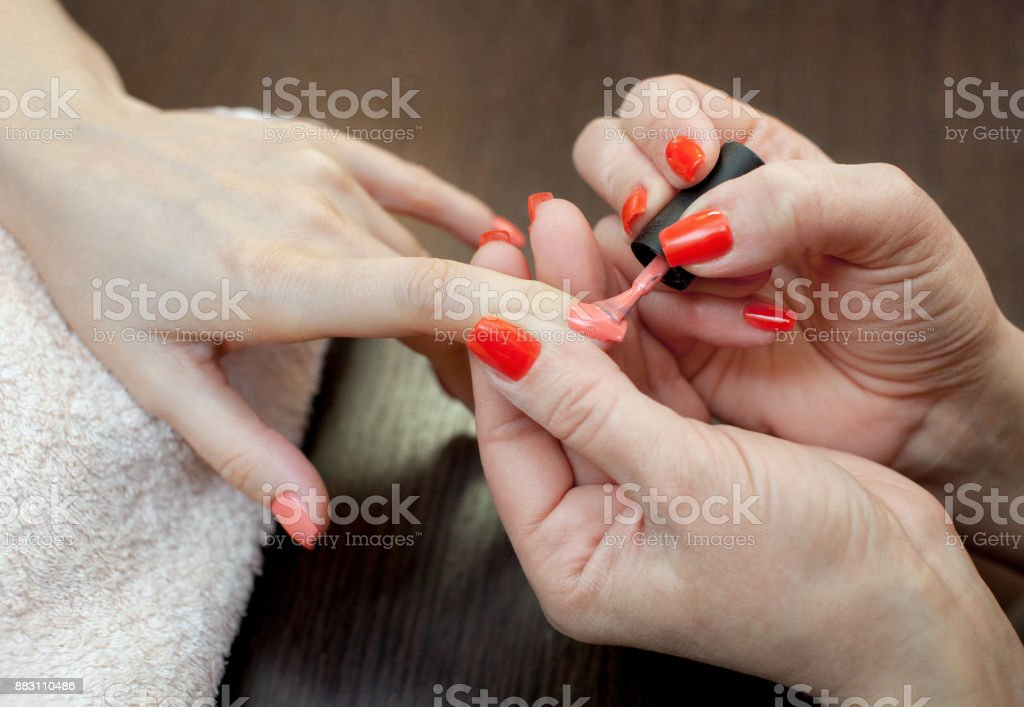 The master of the manicure paints nails with nail polish during the procedure of nail extensions with gel in the beauty salon stock photo