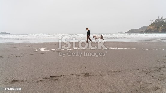 Woman walking a big dog on the beach of the Pacific Ocean in Trinidad, California, USA