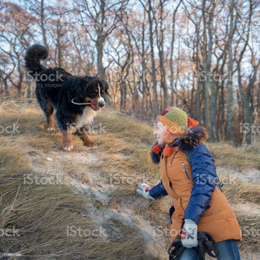 La femme mature 55 ans jouant avec le chien Zennenhund dans la forêt - Photo