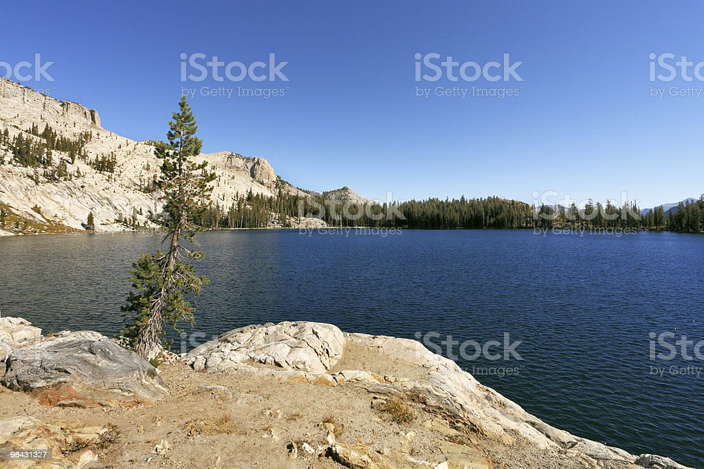 The May lake in mountains Yosemite park royalty-free stock photo