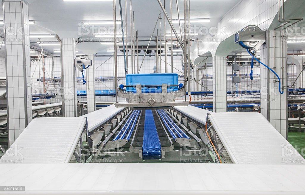 L'industrie de transformation à base de viande - Photo