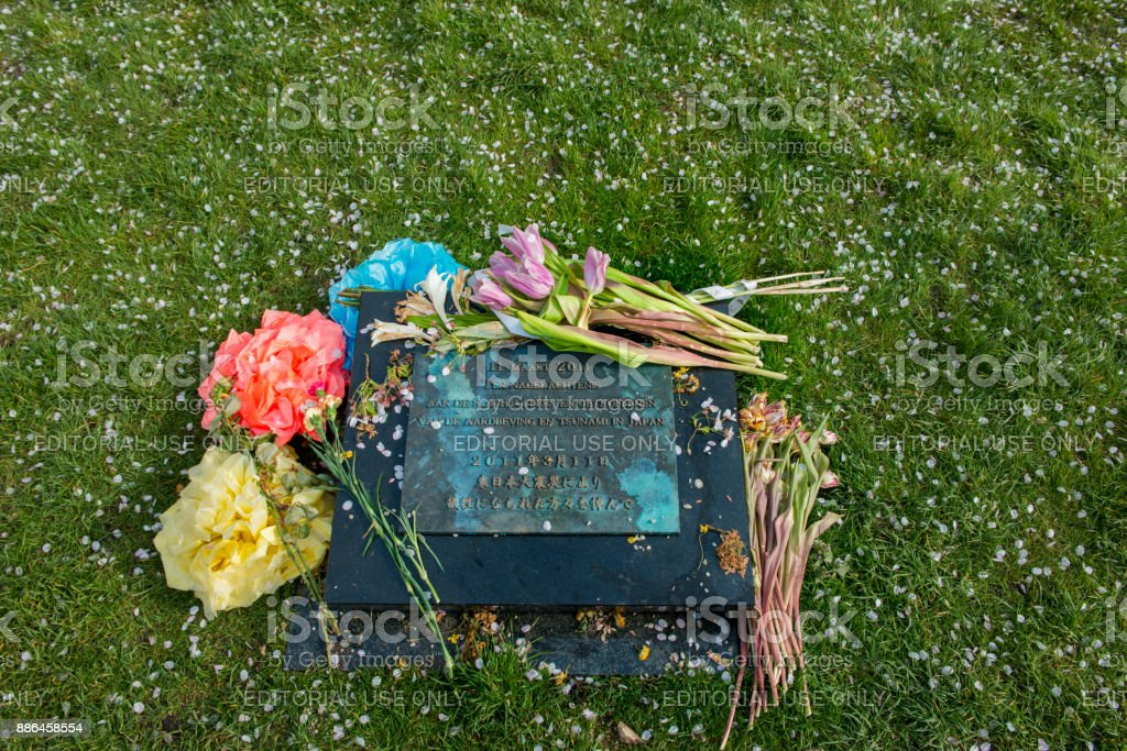 The memorial stone in the Japanese cherry blossom garden. stock photo