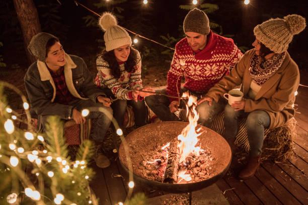 de vrolijkste tijd van het jaar! - family winter holiday stockfoto's en -beelden