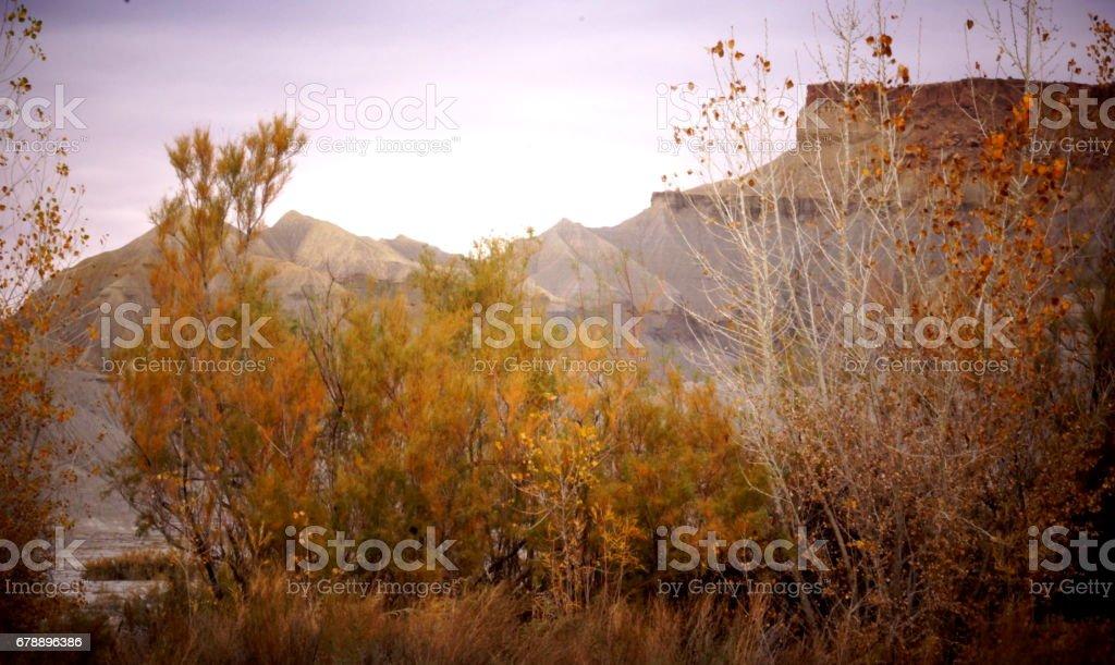 La mesa a couleur d'automne. photo libre de droits
