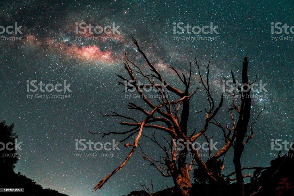 La voie Láctea dans l' ' hémisphère sud - Foto de stock de Astronomia royalty-free