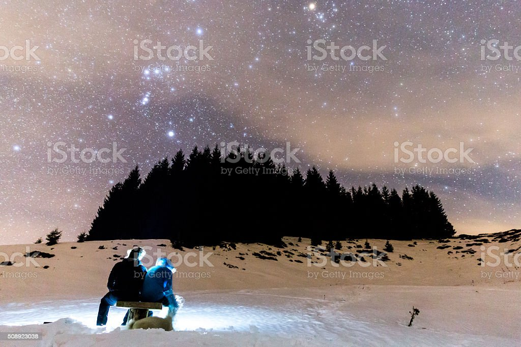 The Milky Way over the winter mountain landscape with pine trees. Two...
